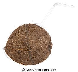 Coconut closeup