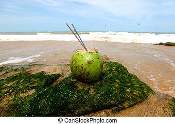 coconut cocktail
