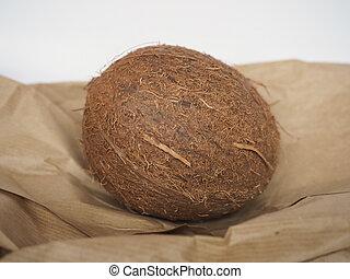coconut (scientific name Cocos nucifera) vegetarian fruit food