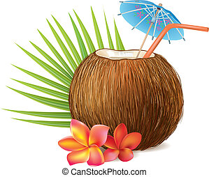 Coconut drink. Contains transparent objects. EPS10