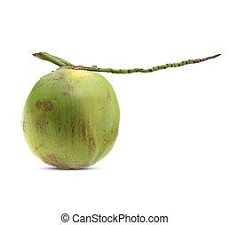 coconut fruit isolated on white background.