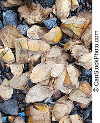 Coconut Fruit Skin Flakes, Which are Strewn Above the Gravel...