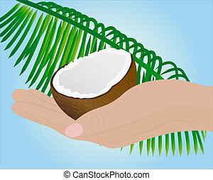Coconut half in a hand and palm leaf