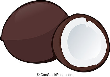 Coconut - Illustration of a coconut on white background -...