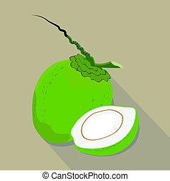 coconut isolated flat style, vector illustration.