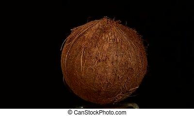 Coconut isolated on black, rotation