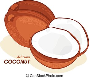 Coconut isolated on the white