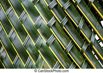 Coconut leaves woven background