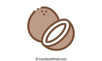 coconut nut Icon Animation. color coconut nut animated icon on white background