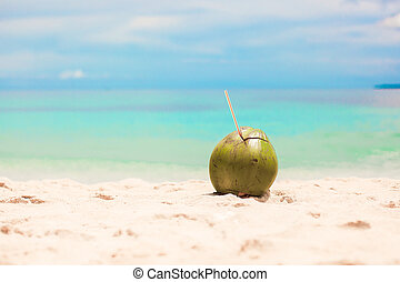 Coconut on the beach background turquoise sea and blue sky