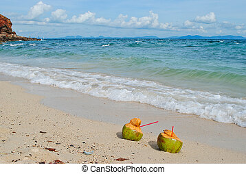 coconut on the beach