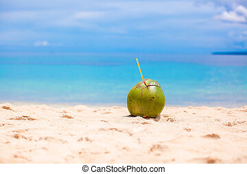 Coconut on tropical white sand beach in a sunny day