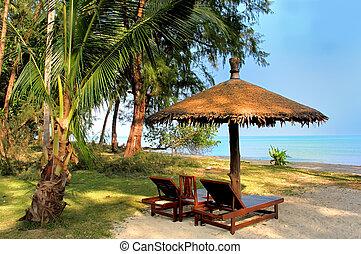 Coconut palm on Siam Bay