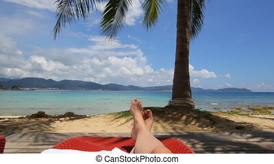 Coconut palm tree on Beautiful Tropical beach