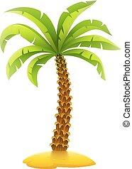 Coconut palm tree on sand island
