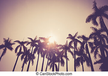 coconut palm tree silhouette vintage retro