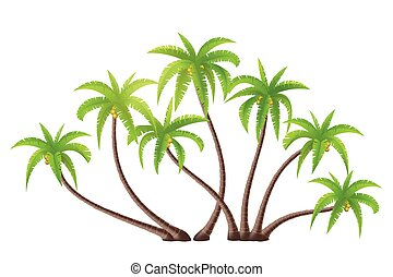 Coconut Palm trees - Coconut palm trees isolated on white,...