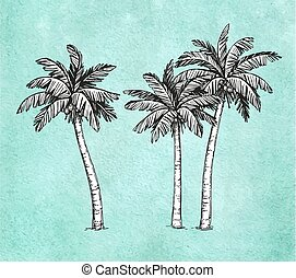 Coconut palm trees - Hand drawn vector illustration of...