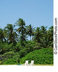 Coconut palm trees with white chairs (honeymoon concept) -...