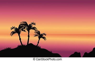 Coconut palms on beach