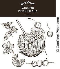 Coconut Pina Colada. Vector sketch illustration of...