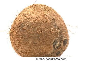 Coconut rotating
