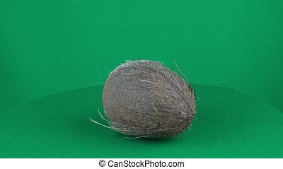 Coconut Rotating in Green Screen Chroma Key Matte