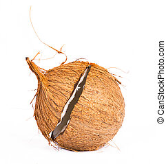 Coconut shell casing