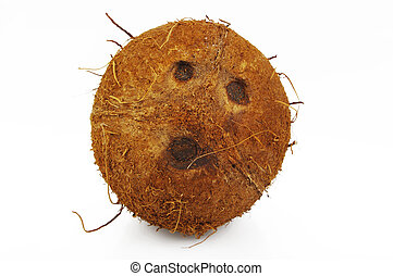 Coconut sliced on a white background