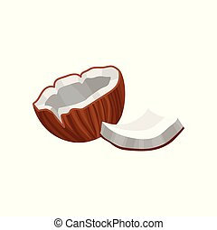 Coconut, source of edible oil vector Illustration on a white background