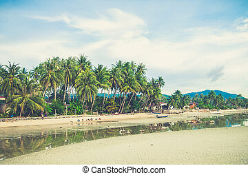 Coconut tree on the beach in Thailand