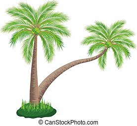 coconut tree on white background vector design