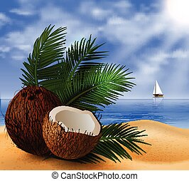Coconut tropical nut fruit with cut vector illustration on a...