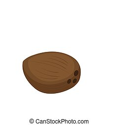 coconut vector icon isolated on white background