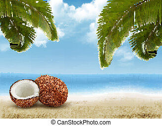 Coconut with palm leaves. Summer vacation background. Vector.