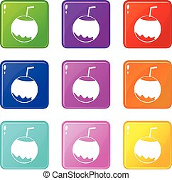 Coconut with straw icons 9 set