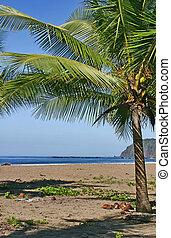 Jaco Beach, Costa Rica. Pasific coast.