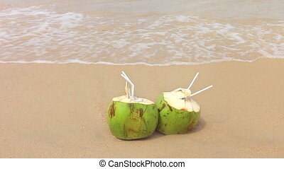 Coconuts on a Sandy Beach.