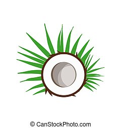 Coconuts with green leaves isolated on white background. Flat design style. Vector illustration.
