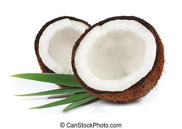 cocos, com, folhas