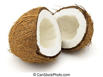 Cocos on a white background