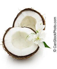 Cocos with jasmine