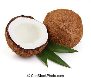 Cocos with leaves on a white background