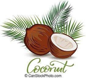 cocosnoot, en, palm loof, illustratie