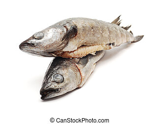 cod fish isolated on white