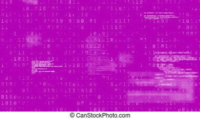 codage, binaire, pourpre, données, sur, fond, animation, traitement