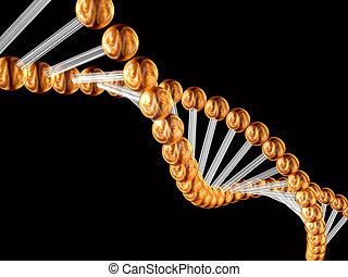 code génétique, 3d