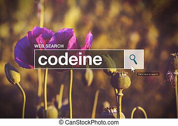 Codeine in internet browser search box, opium poppy field in background