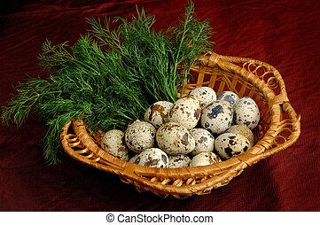 codorniz, huevos, 1