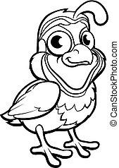 codorniz, personagem, pássaro, caricatura